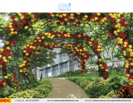 cool-suites-of-wind-residences-condo-for-sale-in-tagaytay-city-amenity-rose-garden