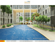 shore-3-residences-home-sale-near-mall-of-asia-amenities-swiming-pool6